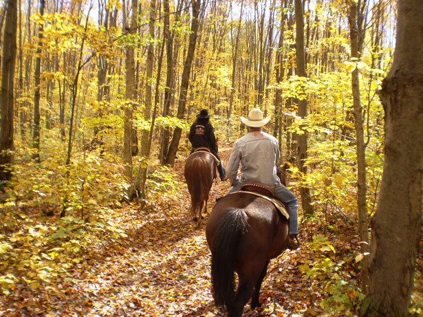 horseback Horseback Riding Vacations: Experience Carefree Vacation at its Best