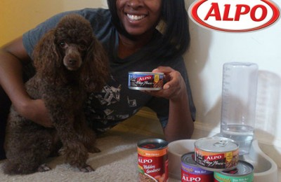 ALPO dog food pets