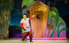 Shrek Plays Alliance Theater