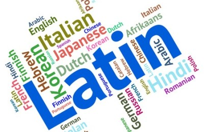 Improve Your Career Prospects By Learning A New Language