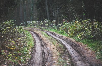 Off-Roading Without Getting Lost: Skills and Apps for Navigating