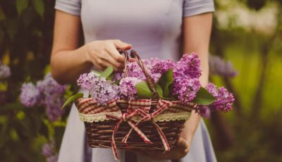 Gifting Flowers: A Great Way of Uplifting Mood
