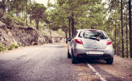 4 Reliable Cars Worth Investigating for Your Next Family Road Trip