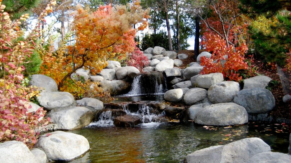 Why Every Garden Deserves A Water Feature