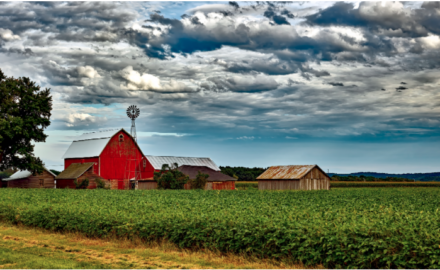Moving Away From the City? 4 Tips to Help You Assimilate Into Country Living