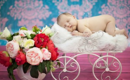 10 Props that Any Newborn Photographer Should Have