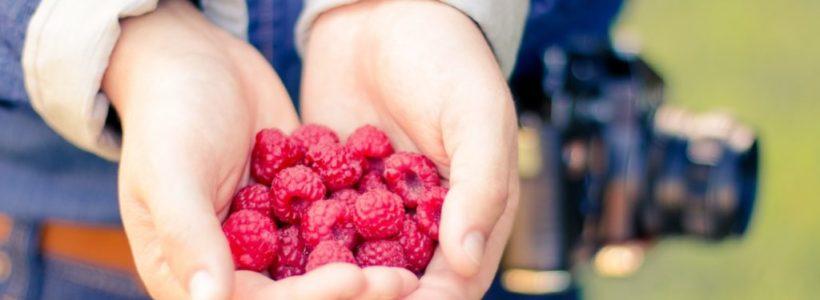 The Health Benefits of Raspberry Ketones