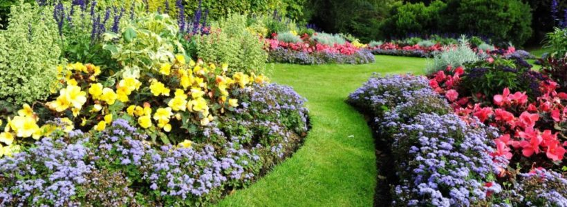Features of the Best Landscaping Services Companies