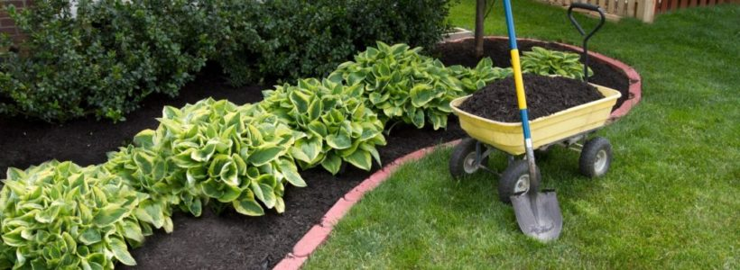 What to Check On Before Engaging a Landscape Designer