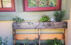 5 Outdoor DIY Projects To Tackle This Summer and Fall
