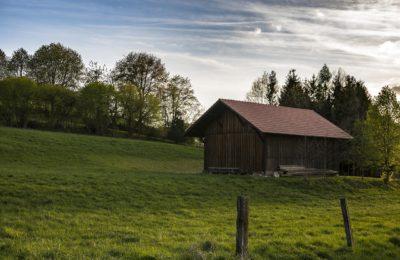 Rural vs Urban Living